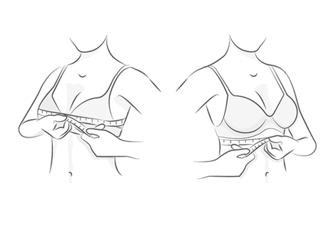 Larger Sizes Aren't Simply Bigger: A Lesson in Bra Grading and How We Did it Better