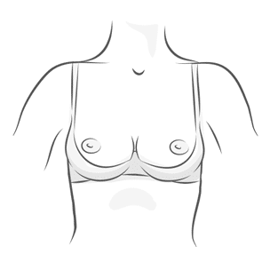 Quarter Cup Bra Illustration
